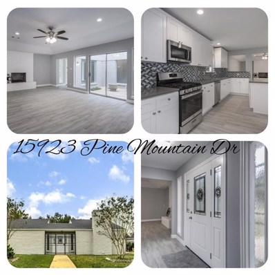 15923 Pine Mountain Drive, Houston, TX 77084 - MLS#: 80447862