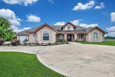 24623 Green Jay Drive, Hockley, TX 77447 - MLS#: 80834292