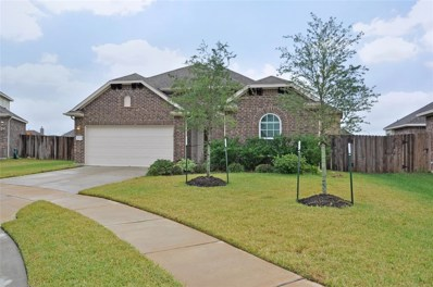 16334 Tyler Reach Drive, Hockley, TX 77447 - #: 81942484