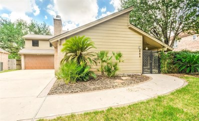 919 Ivy Wall Drive, Houston, TX 77079 - MLS#: 82014481