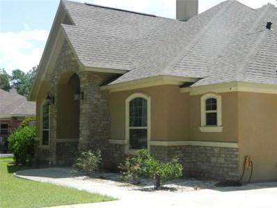 22929 Jurua Street, Porter, TX 77365 - #: 82430574