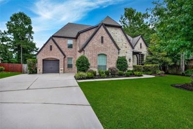 146 Monarch Park Drive, Montgomery, TX 77316 - #: 8270808
