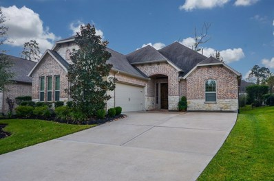 31 Danby Place, Tomball, TX 77375 - #: 83707520