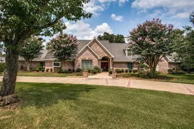 317 E Timbercreek Drive, Lake Jackson, TX 77566 - MLS#: 8434224