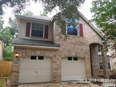 26 Wildflower Trace Place, The Woodlands, TX 77382 - #: 8592035