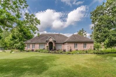 11416 W Zoe Loop Drive, Montgomery, TX 77316 - MLS#: 86869317