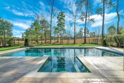 6 Chivary Oaks Court, The Woodlands, TX 77382 - MLS#: 88175667