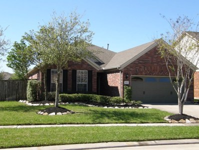 9503 Herons Grove Lane, Katy, TX 77494 - #: 88740273