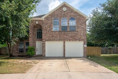 17219 Pleasant Lily Court, Houston, TX 77084 - #: 88851346