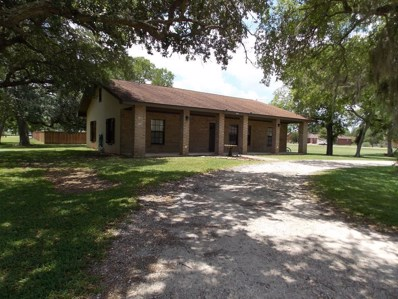 306 Cactus, Oyster Creek, TX 77541 - #: 92174987