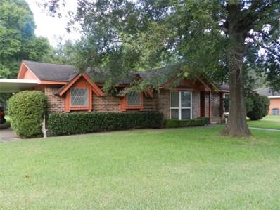 906 N Winfree Street, Dayton, TX 77535 - MLS#: 93486251