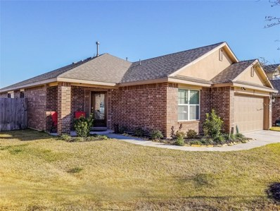 1811 Luminous Water Lane, Rosharon, TX 77583 - MLS#: 94196044