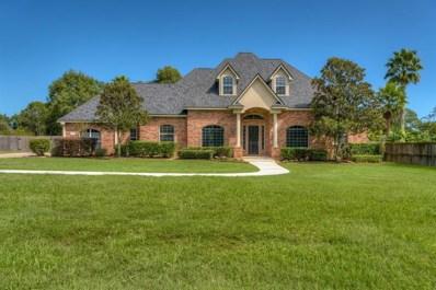 720 Mountain View Drive, Montgomery, TX 77356 - MLS#: 94980142