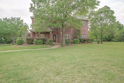 8720 Grand Lake Estates Drive, Montgomery, TX 77316 - MLS#: 95441870