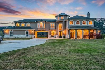 20311 Country Lake, Magnolia, TX 77355 - MLS#: 95475464