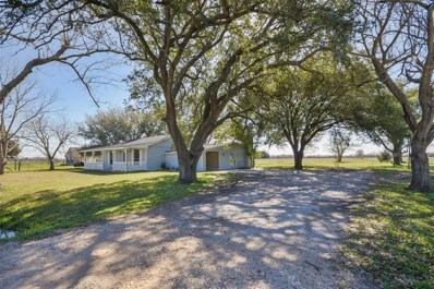 362 County Road 495, Dayton, TX 77535 - #: 95770163