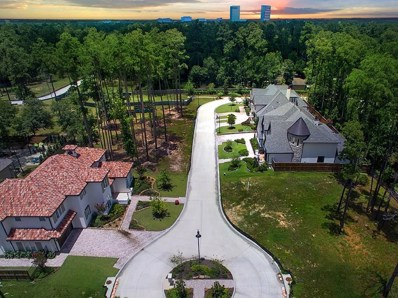 8 Honey Daffodil Place, The Woodlands, TX 77380 - MLS#: 95873260