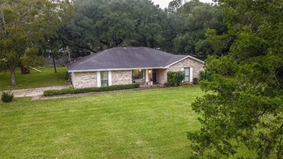 621 Old Plantersville Road, Montgomery, TX 77316 - MLS#: 96175911