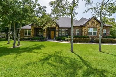 3307 Wellspring Lake Drive, Fulshear, TX 77441 - MLS#: 96635950