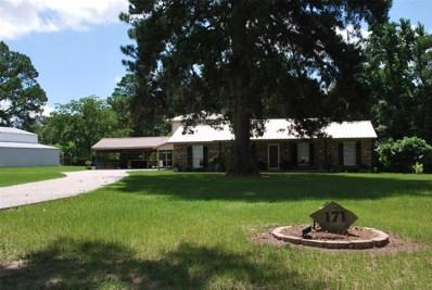 171 Snow Hill, Coldspring, TX 77331 - MLS#: 96995011