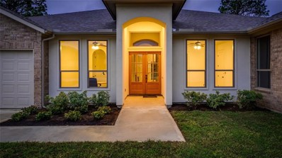 61 South Wind Dr, Montgomery, TX 77356 - #: 97927907
