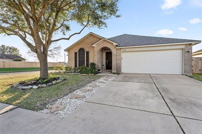 17239 Ranch Country Road, Hockley, TX 77447 - #: 98853459