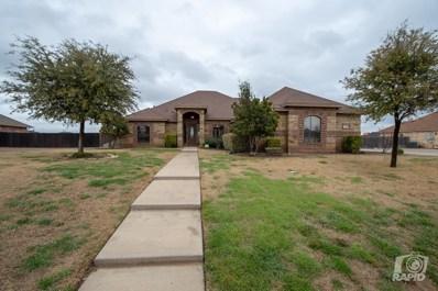 1806 Pine Valley St, San Angelo, TX 76904 - #: 97231