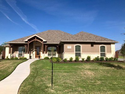 4725 Shadow Creek, San Angelo, TX 76904 - #: 97456