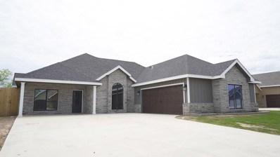 2029 Silver Creek Court, San Angelo, TX 76904 - #: 98986