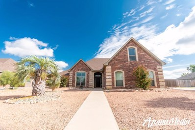 1706 Pine Valley St, San Angelo, TX 76904 - #: 99072