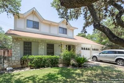 14623 Hook Dr, San Antonio, TX 78231 - #: 1287383