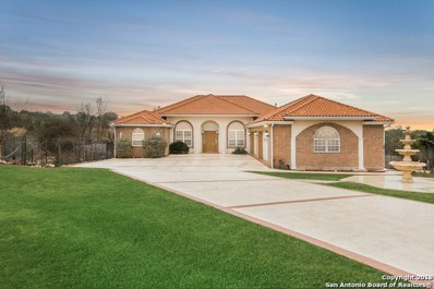 366 Mystic Shores Blvd, Spring Branch, TX 78070 - #: 1289084