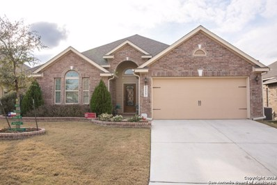 22123 Gypsy Hawk, San Antonio, TX 78261 - #: 1289800