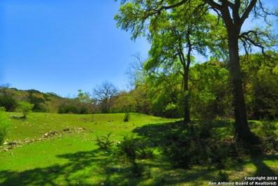 515 Flach Ranch Road E, Comfort, TX 78013 - #: 1299613