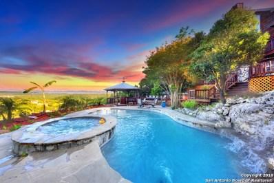 11433 Lago Vista, Helotes, TX 78023 - #: 1307061