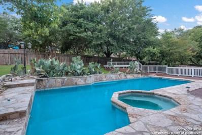 3027 Swandale Dr, San Antonio, TX 78230 - #: 1313376