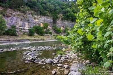 8722 & 8716 River Rd, New Braunfels, TX 78132 - #: 1317824