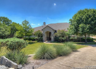 1193 Long Meadow Dr, Spring Branch, TX 78070 - #: 1322416