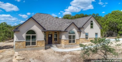 1005 Flaman Rd, Canyon Lake, TX 78133 - #: 1322991