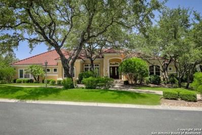17 Vineyard Dr, San Antonio, TX 78257 - #: 1324602