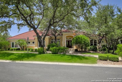17 Vineyard Dr, San Antonio, TX 78257 - #: 1324602
