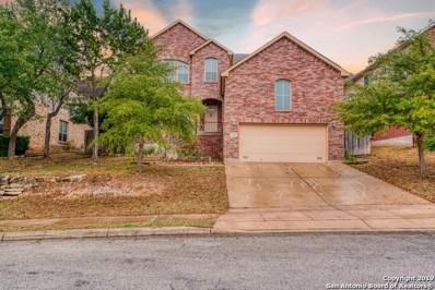 3323 Roan Valley, San Antonio, TX 78259 - #: 1324711