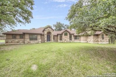 228 Copper Ridge Dr, La Vernia, TX 78121 - #: 1325626