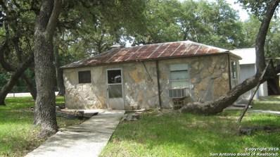 507 W Clark St, Canyon Lake, TX 78133 - #: 1325989