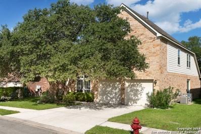20207 Standish Rd, San Antonio, TX 78258 - #: 1327220