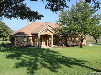173 Abrego Lake Dr, Floresville, TX 78114 - #: 1329561