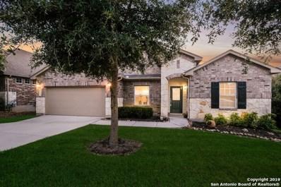 28927 Gooseberry, San Antonio, TX 78260 - #: 1330785