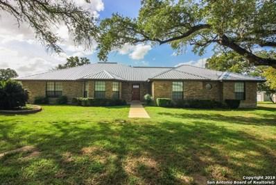 141 Oak Fields Dr, Floresville, TX 78114 - #: 1332826