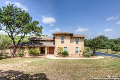 589 Long Meadow Dr, Spring Branch, TX 78070 - #: 1333115