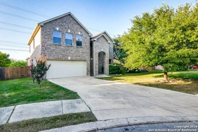 4311 Palm Pt, San Antonio, TX 78259 - #: 1333991